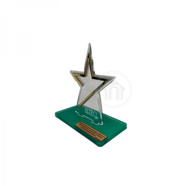 trofeu, trofeu acrilico, uberlandia personalizados, personalizados, brindes, homenagem, motivacional, presentes, cerimonia, premios, placas comemorativas,